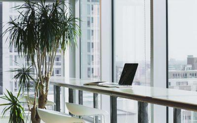 Biuro serwisowane a wydajność pracy